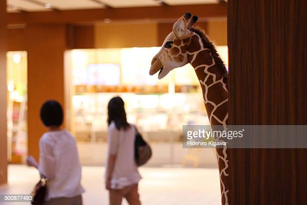 City Giraffe