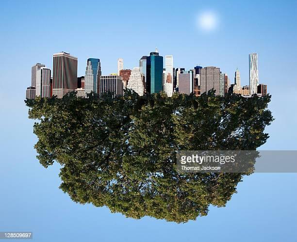 city in a tree - 清らか ストックフォトと画像