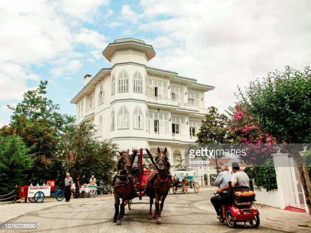 stadtleben in buyukada, istanbul - pferdeantrieb stock-fotos und bilder