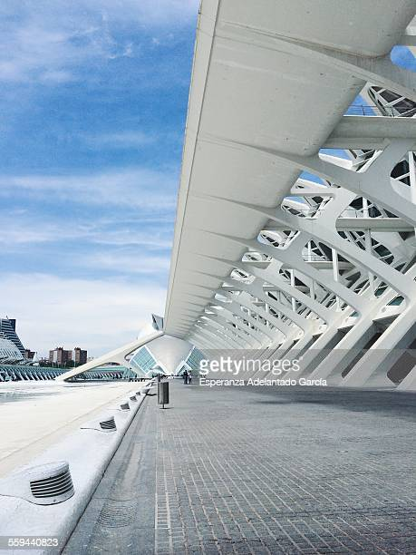 City of Arts and Sciences of Valencia Spain May 24 2015