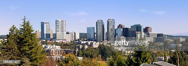 City of Bellevue in Washington State
