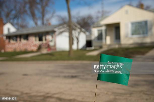 City of Flint Sewer Dept marker flag waves in the wind on a block where lead water lines have started to be replaced on March 17 2016 in Flint...