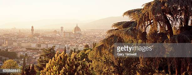 City of Florence and Duomo viewed through trees