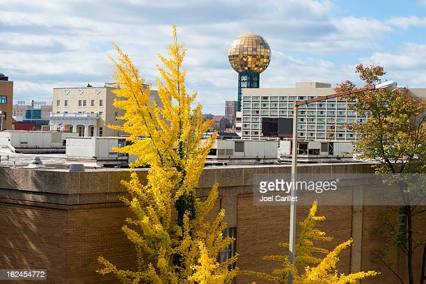 city of knoxville, tennessee - knoxville tennessee stock pictures, royalty-free photos & images