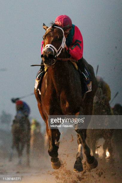 City of Light ridden by jockey Javier Castellano crosses the finish line to win the Pegasus World Cup Championship at Gulfstream Park on January 26...