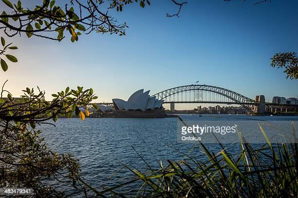 City of Sydney Opera House and Harbour Bridge at Dusk