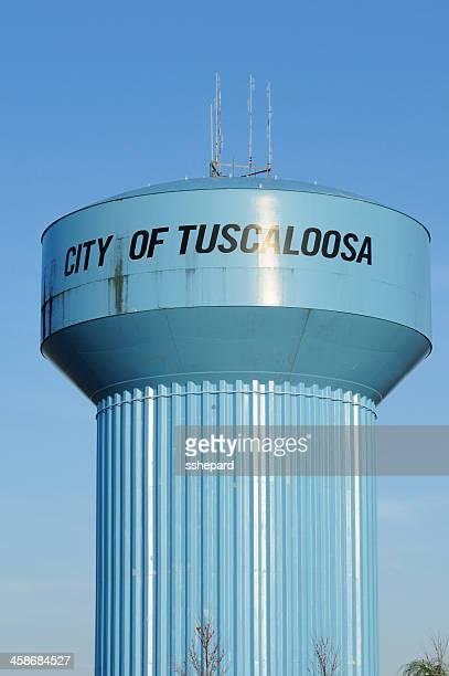 街のタスカルーサウォータータワー - タスカルーサ ストックフォトと画像