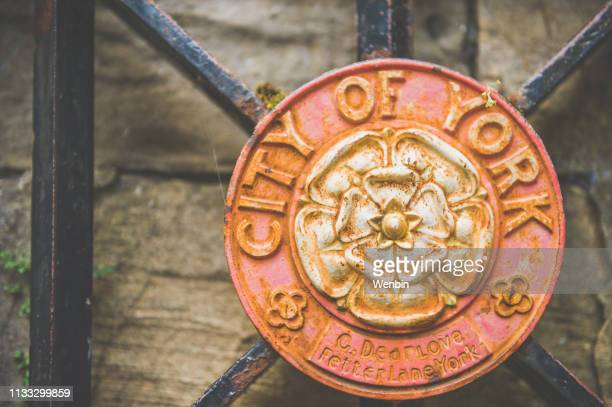 city of york - york stock photos and pictures