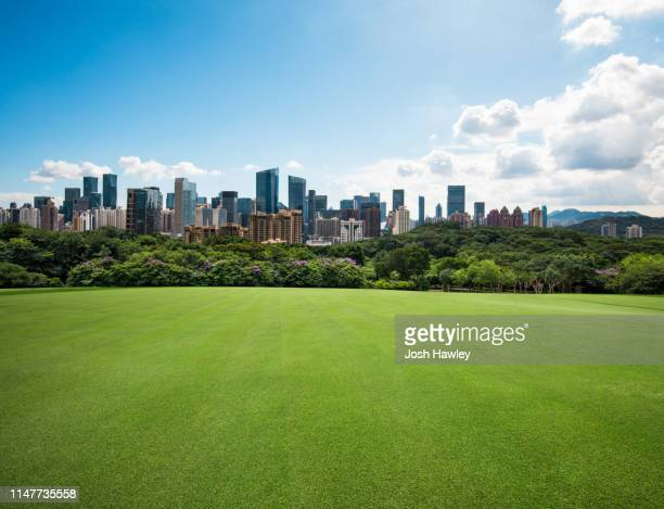 city park grass - wide angle stock pictures, royalty-free photos & images