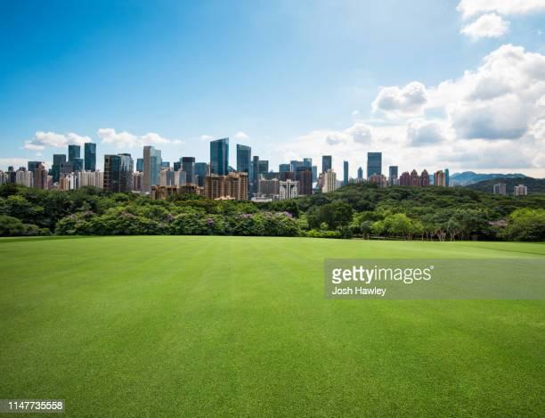 city park grass - aparcar fotografías e imágenes de stock