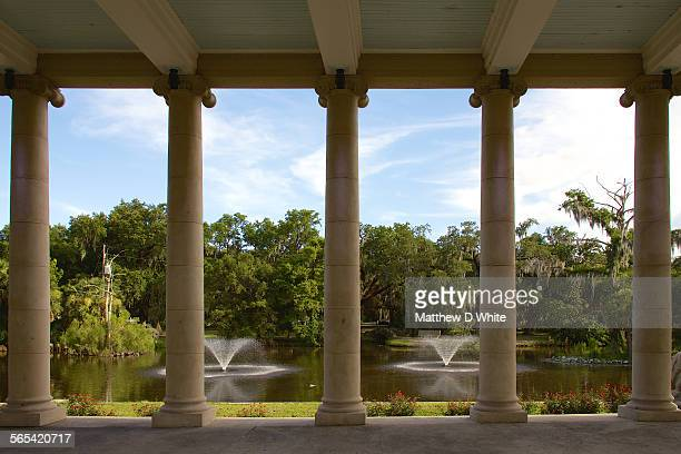 city park, new orleans - new orleans city park stock pictures, royalty-free photos & images