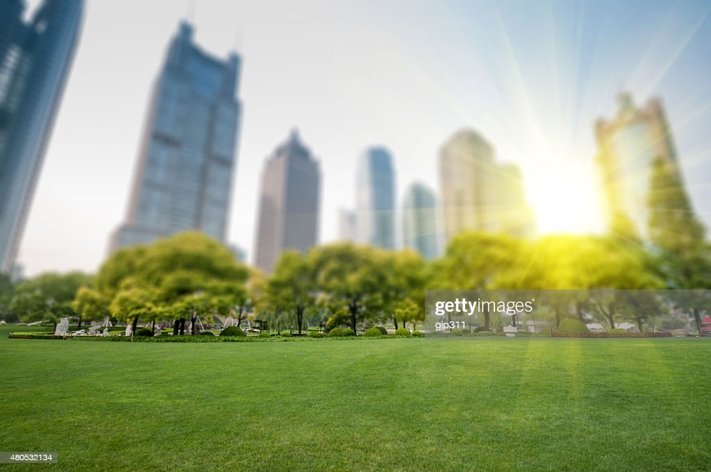 city park with modern building background in shanghai : Stockfoto