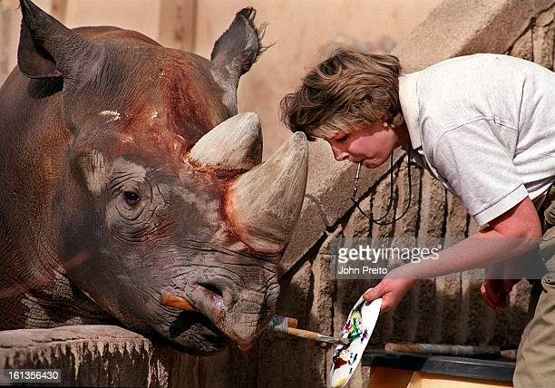 ' The Mask Project' The world's only Know painting rhinoceros Mshindi is creating his masterpiece for The Mask Project 2000 collection Mshindi is...
