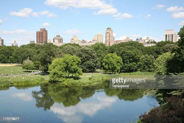 City Skyline And Park