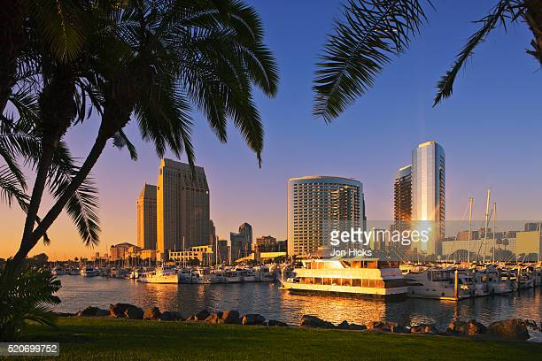 city skyline from embarcadero marina park. - san diego imagens e fotografias de stock