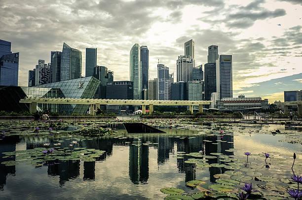 City Skyline Reflection Over A Lotus Pond Wall Art
