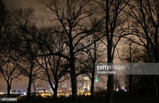 City Skyline through the silhouetted trees