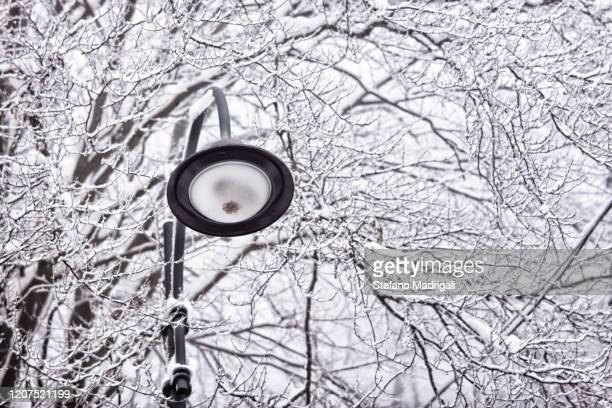 a city street lamp by day in mountain environment with frozen background and trees with snow - sanaa stock pictures, royalty-free photos & images