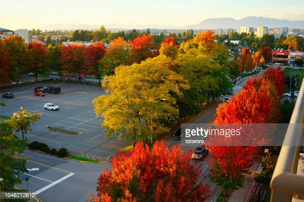 city view from balcony at sunset in fall season with autumn colors, in richmond, greater vancouver bc canada - richmond british columbia stock photos and pictures
