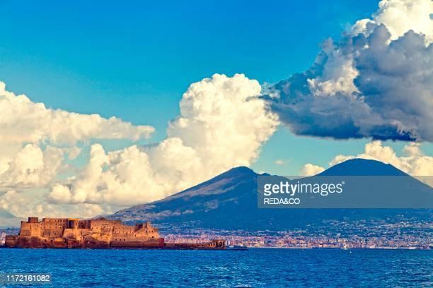 Cityscape and Castell dell'Ovo Naples Campania Italy Europe