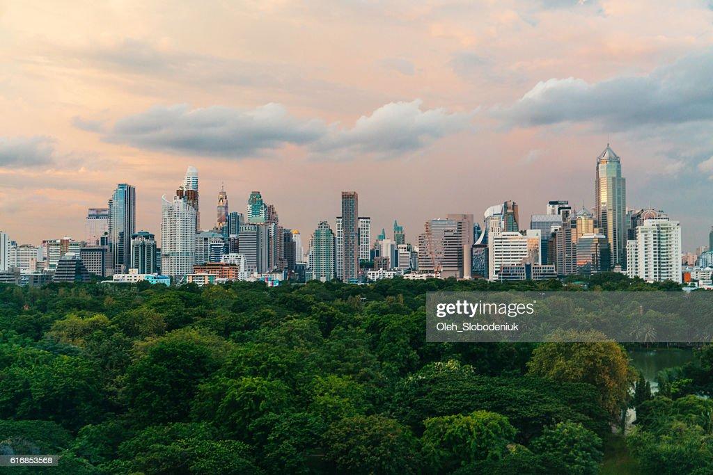 Cityscape of Bangkok and Lumpini Park : Stock Photo