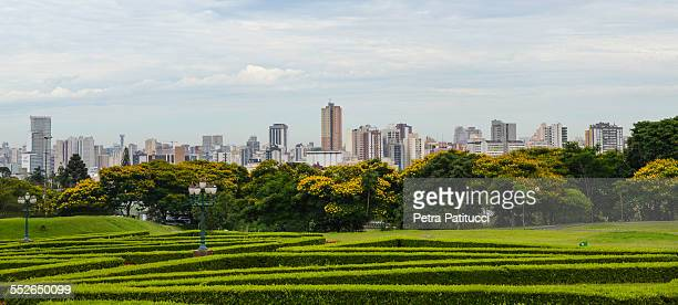 cityscape of curitiba - curitiba stock pictures, royalty-free photos & images