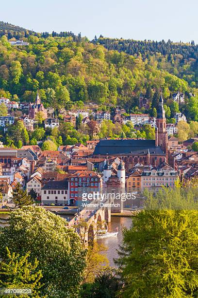 cityscape of heidelberg, germany - heidelberg stock photos and pictures