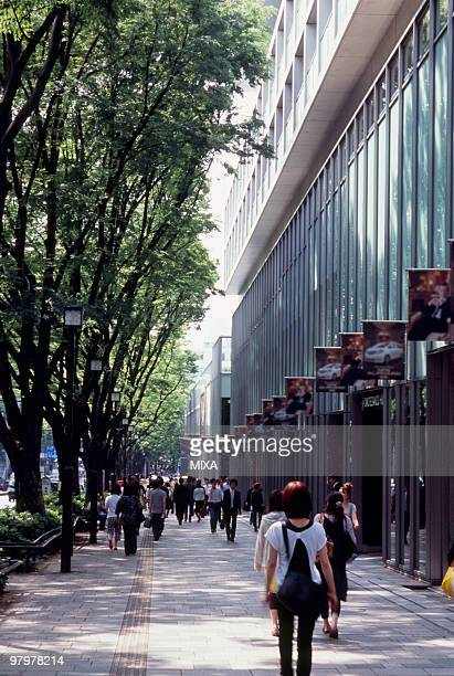 cityscape of omotesando, tokyo, japan - 表参道 ストックフォトと画像