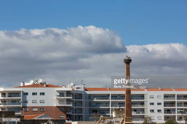 Cityscape with storks on chimney.