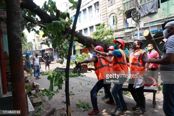 Civil differences personnel cut the branches of an uprooted tree and locals supports to clear the road blockage on the aftermath of super cyclone...