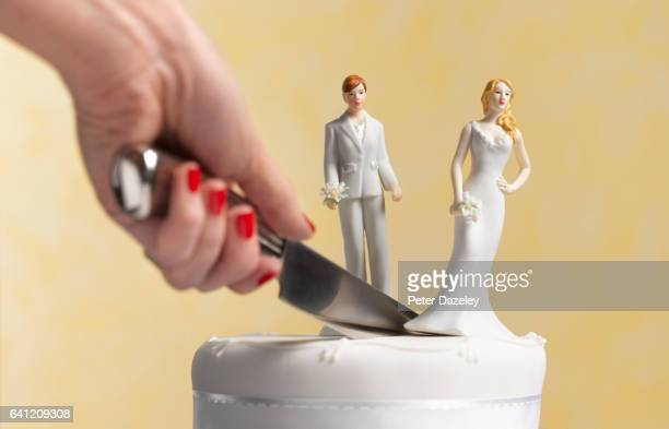 Civil partnership lesbian Divorce cake