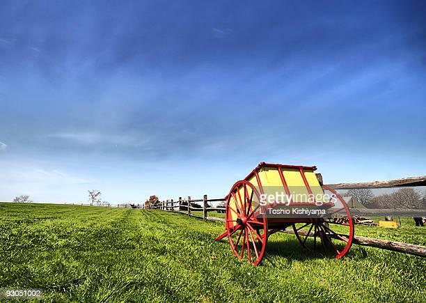 Civil War Wagon