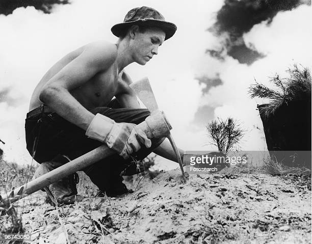 A Civilian Conservation Corps enrollee planting a tree The Civilian Conservation Corps was a public work relief program for unemployed men providing...