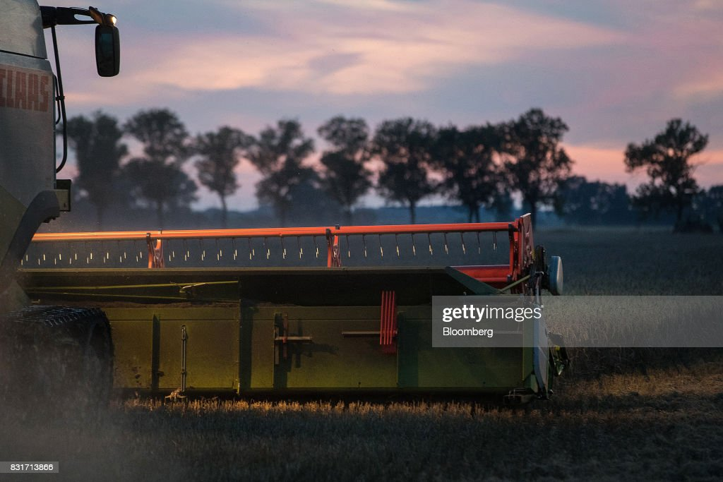 A Claas KGaA Lexion 600 combine harvester operates in a wheat field in Wustermark, Germany, on Monday, Aug. 14, 2017. In Germany, problems with specific weight and Hagberg, a measure of baking quality, mean as much as 40 percent of wheat may have to go to the animal feed market this year. Photographer: Krisztian Bocsi/Bloomberg via Getty Images