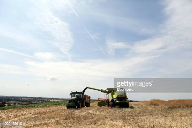A Claas KGaA Lexion combine harvester cuts through a field of rapeseed during a harvest in South Woodham Ferrers UK on Thursday July 19 2018 Major...
