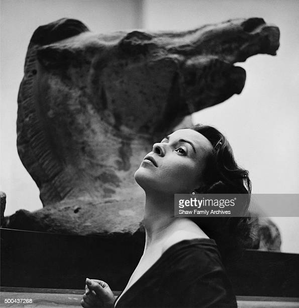Claire Bloom poses with an Elgin Marble sculpture of a horse behind her at the British Museum in 1950 in London United Kingdom