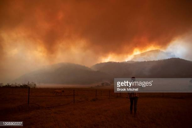 Claire Cowie watches over her horses as fire approaches Bumbalong Road Bredbo North February 01 2020 near Canberra Australia ACT Chief Minister...