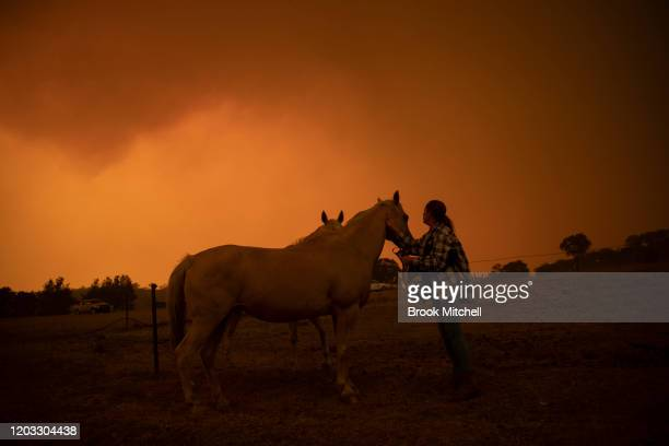 Claire Cowie with her horses on her Bumbalong Road Bredbo North Property near Canberra February 01 2020 in Canberra Australia ACT Chief Minister...