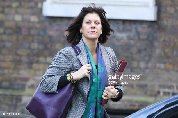 Claire Perry Minister of State at Department for Business Energy and Industrial Strategy seen upon her arrival at the Downing Street to attend the...