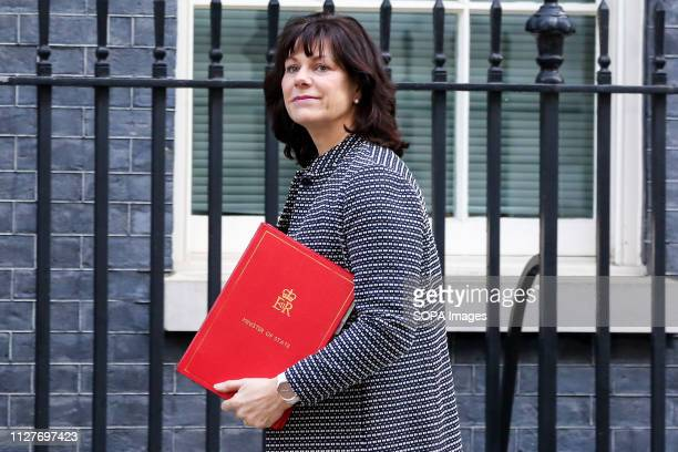 Claire Perry Minister of State at Department for Business Energy and Industrial Strategy is seen on her arrival at the Downing Street to attend the...