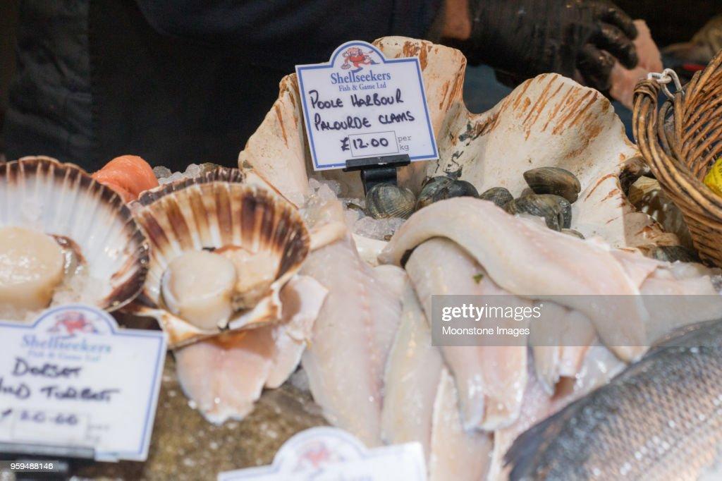 Clam in Borough Market, London : Stock-Foto