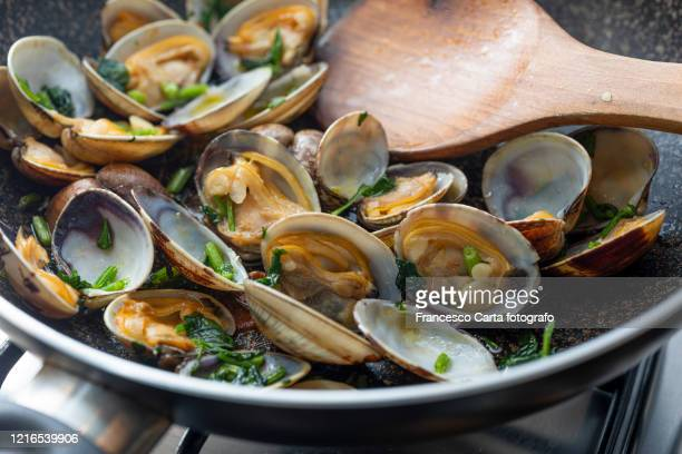 clam - seafood - tempio pausania stock pictures, royalty-free photos & images