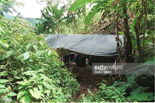 Clandestine cocaine lab sits almost hidden October 9, 2000 in Purto Rico, Caqueta, Colombia. A cocaine lab can be a simple operation in Colombia. A...