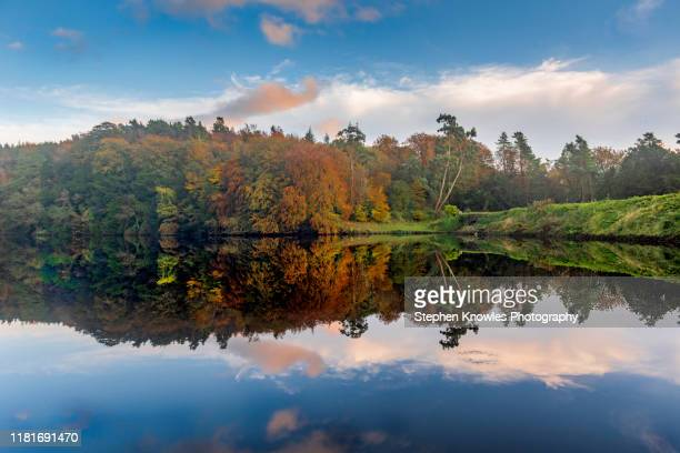 clapham lake, autumn reflection - greater london stock pictures, royalty-free photos & images