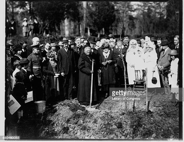 Clara Barton founder of the American Red Cross attends a ceremonial tree planting