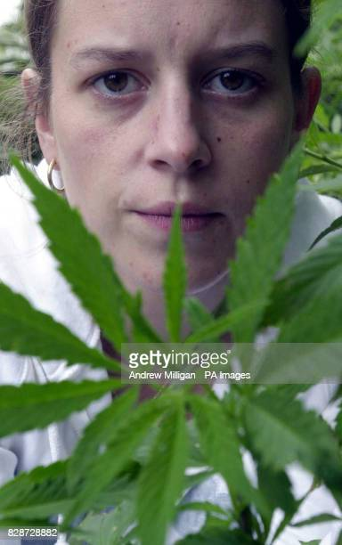 Clara Odonnell spokesperson from the Legalise Cannabis Society, stands in the garden of multiple sclerosis sufferer Elizabeth Ivol in South...