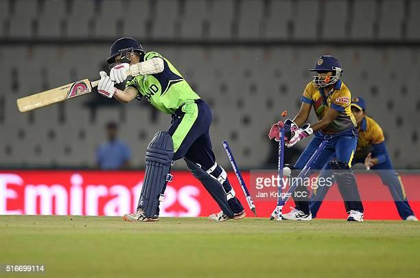 Clare Shillington of Ireland is bowled during the Women's ICC World Twenty20 India 2016 match between Sri Lanka and Ireland at the IS Bindra Stadium...