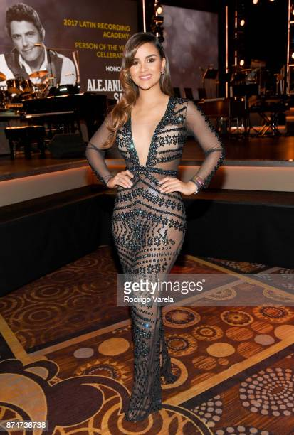 Clarissa Molina attends the 2017 Person of the Year Gala honoring Alejandro Sanz at the Mandalay Bay Convention Center on November 15 2017 in Las...