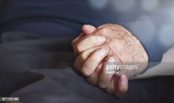 clasped hands od loving senior couple - liver spot stock photos and pictures