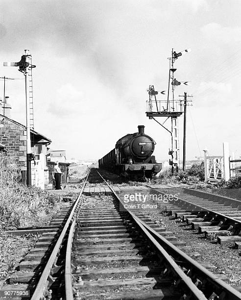 Class Q6 0-8-0 No 63395 approaches Ryhope from South Dock, Sunderland, with coal empties for South Hetton colliery. A dog is running along in front...